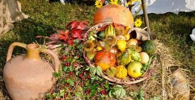 Lucrarile unui calendar agricol pe timp de toamna