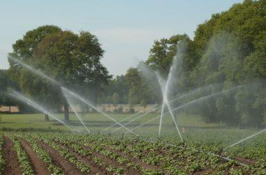 Vine căldura! Cum arată sistemul tău de irigații?